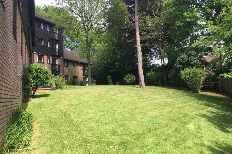 Commercial Garden Maintenance36
