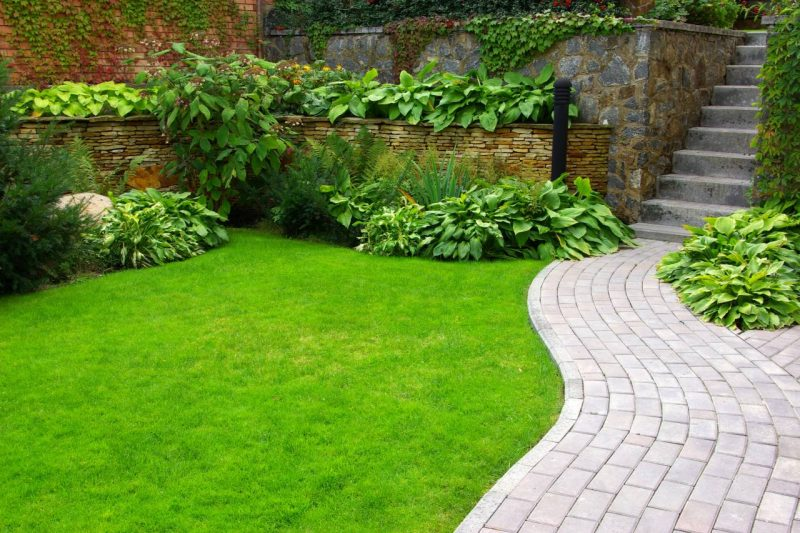 Garden Maintenance Kent and Sussex2