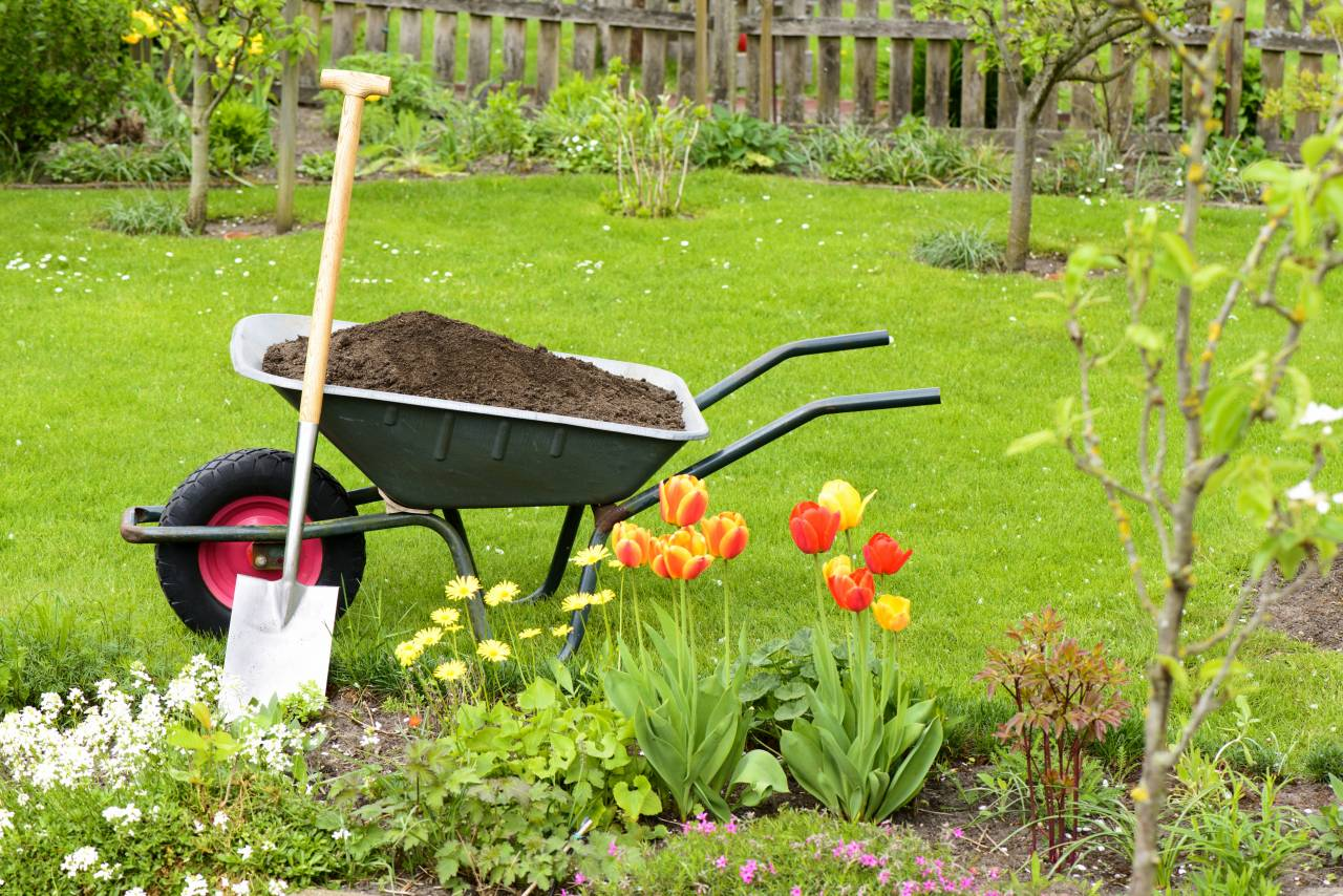 Garden Maintenance Kent and Sussex23